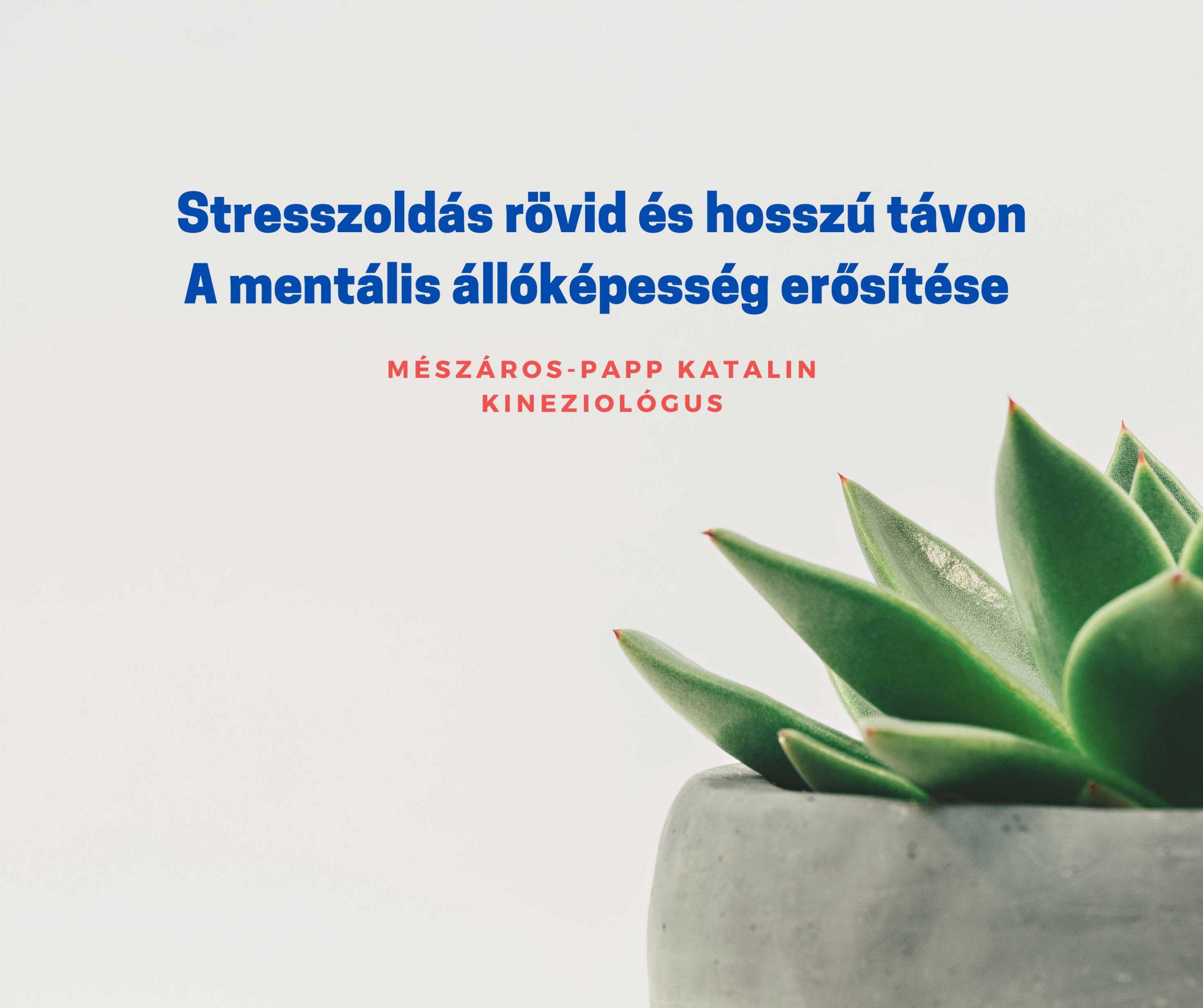 Kineziológia Vác - Stresszoldás rövid és hosszú távon